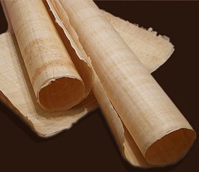 histoire-livre-papyrus
