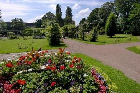 jardin botanique 2012