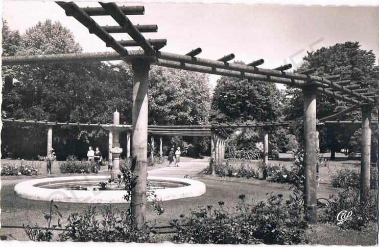 jardin botanique N&B