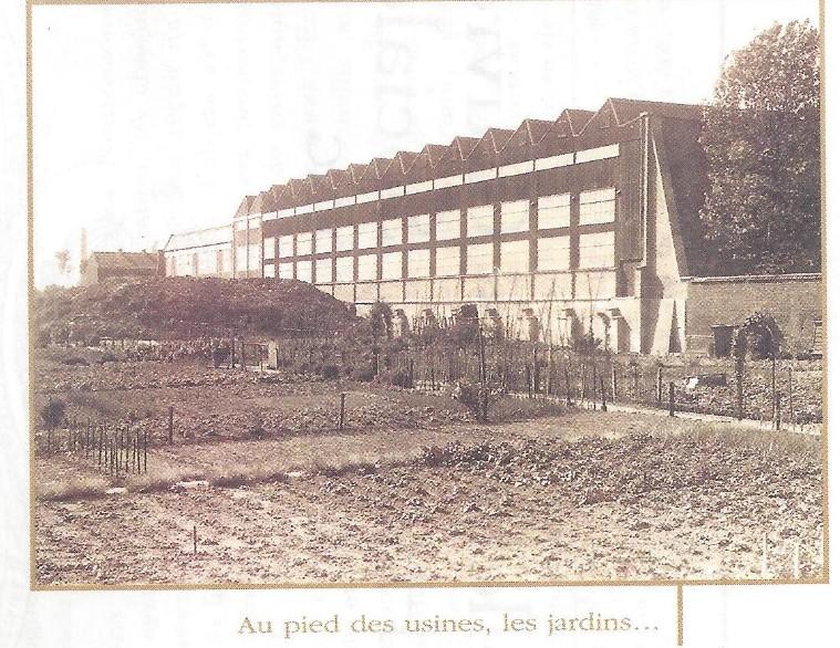 Histoire du virolois jardins ouvriers suite for Kreabel tourcoing adresse