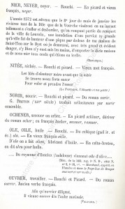 patoi de tg 10_Histoire du Tourcoing Charles Roussel_Delfontaine le livre d'histoire monographies des villes et villages de France