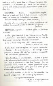 patoi de tg 11b_Histoire du Tourcoing Charles Roussel_Delfontaine le livre d'histoire monographies des villes et villages de France