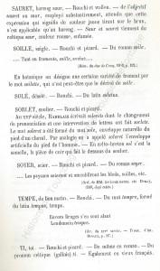 patoi de tg 12b_Histoire du Tourcoing Charles Roussel_Delfontaine le livre d'histoire monographies des villes et villages de France