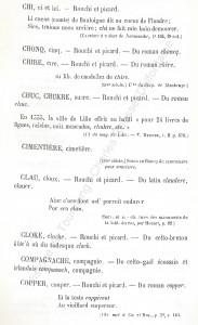 patoi de tg 5_Histoire du Tourcoing Charles Roussel_Delfontaine le livre d'histoire monographies des villes et villages de France