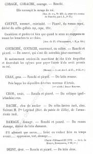 patoi de tg 5b_Histoire du Tourcoing Charles Roussel_Delfontaine le livre d'histoire monographies des villes et villages de France