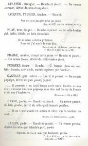 patoi de tg 6b_Histoire du Tourcoing Charles Roussel_Delfontaine le livre d'histoire monographies des villes et villages de France