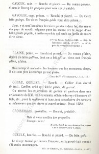 patoi de tg 7_Histoire du Tourcoing Charles Roussel_Delfontaine le livre d'histoire monographies des villes et villages de France