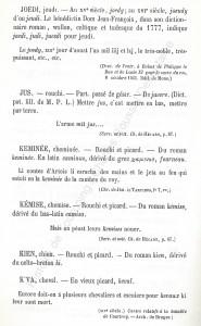 patoi de tg 8_Histoire du Tourcoing Charles Roussel_Delfontaine le livre d'histoire monographies des villes et villages de France