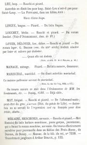 patoi de tg 8b_Histoire du Tourcoing Charles Roussel_Delfontaine le livre d'histoire monographies des villes et villages de France