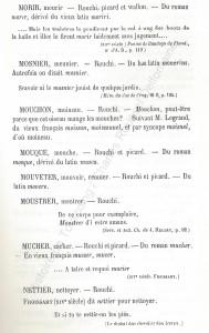 patoi de tg 9b_Histoire du Tourcoing Charles Roussel_Delfontaine le livre d'histoire monographies des villes et villages de France