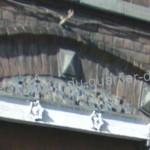 Tourcoing Centre, Tourcoing - Google Maps(91)