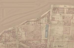 tilleul 1885